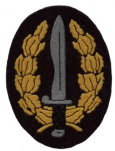 Special forces Beret Badge of the Royal Armed Forces of Spain