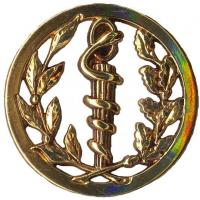 Medical Service Metal Beret Badge of French Army